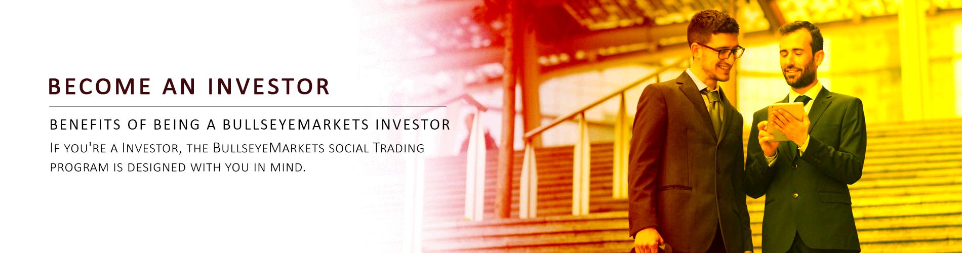Name:  BullsEye Markets Fund Investor.png Views: 12 Size:  726.5 KB